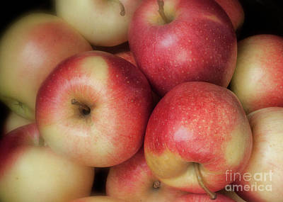 Poster featuring the photograph Gala Apples by Ann Jacobson