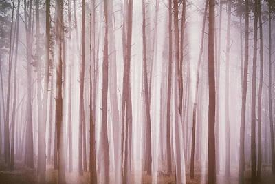 Ghosts In The Fog. Horytsya, 2018. Poster