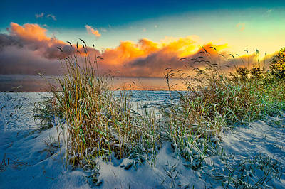 Grass And Snow Sunrise Poster