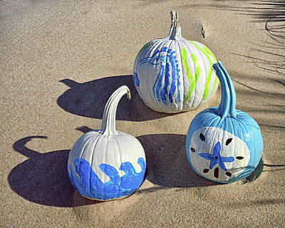 Poster featuring the photograph Halloween Blue And White Pumpkins On A Dune by Bill Swartwout Fine Art Photography