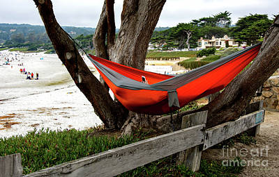 Hammock By The Sea Poster
