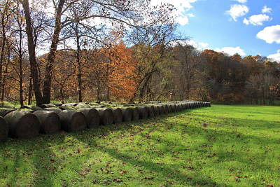 Poster featuring the photograph Hay Bales On An Autumn Day by Angela Murdock