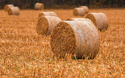 Poster featuring the photograph Hay Rolls by Dan Sproul