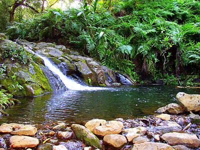 Healing Pool - Maui Hawaii Poster