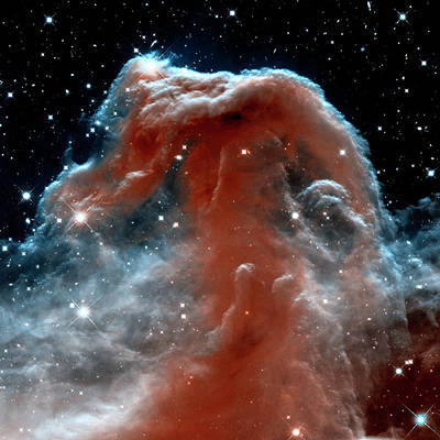 Poster featuring the photograph Horsehead Nebula Outer Space Photograph by Bill Swartwout Fine Art Photography