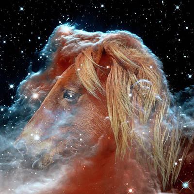Poster featuring the photograph Horsehead Nebula With Horse Head Outer Space Image by Bill Swartwout Fine Art Photography