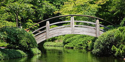 Japanese Garden Arch Bridge In Springtime Poster