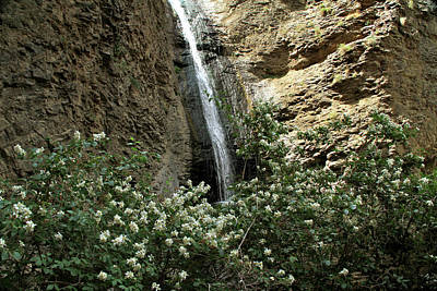 Jump Creek Falls Canyon Poster