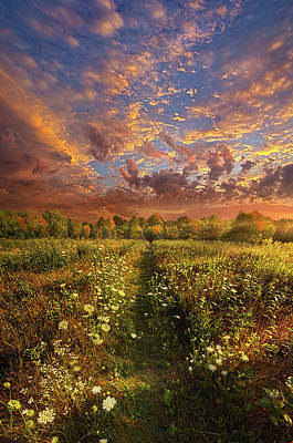 Poster featuring the photograph Just Follow Your Feet by Phil Koch