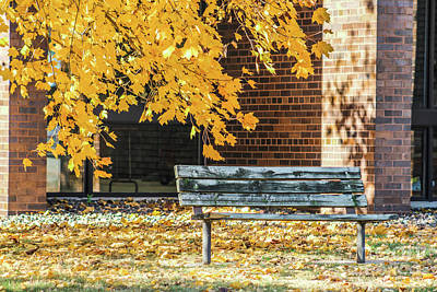 Just A Bench Poster