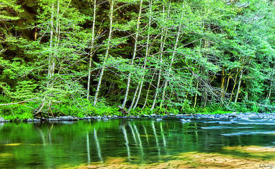 Poster featuring the photograph Kalama River Soothing Flow by Dee Browning