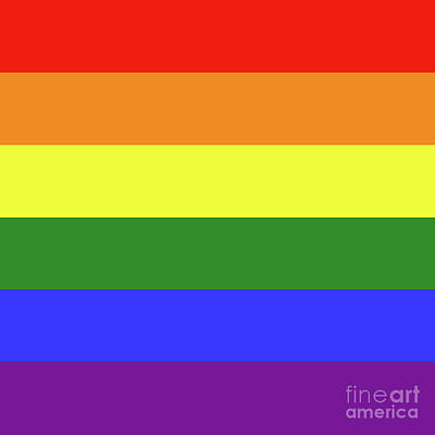 Lgbt 6 Color Rainbow Flag Poster