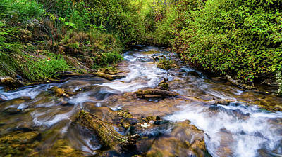 Poster featuring the photograph Little Deer Creek by TL Mair