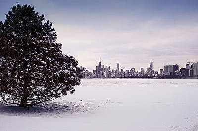 Poster featuring the photograph Lovely Winter Chicago by Milena Ilieva