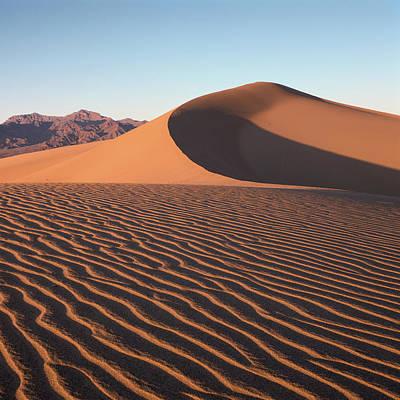 Mesquite Dunes 1-sq Poster