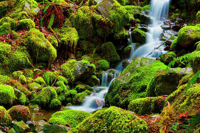 Mini Cascading Waters Poster