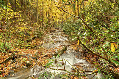 Poster featuring the photograph Mountain Stream by Meta Gatschenberger