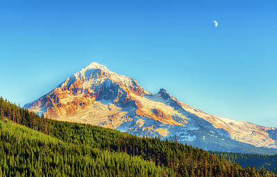 Poster featuring the photograph Mt. Hood From Lolo Pass Mt. Hood National Forest by Dee Browning