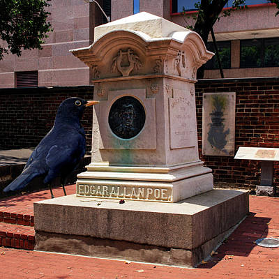 Poster featuring the photograph Nevermore Quoth The Raven by Bill Swartwout Fine Art Photography