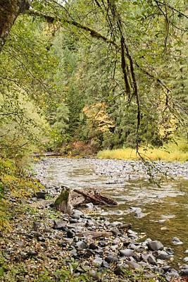 Peaceful Molalla River Poster