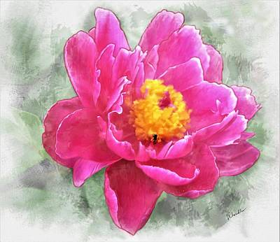 Peony And Bee Poster