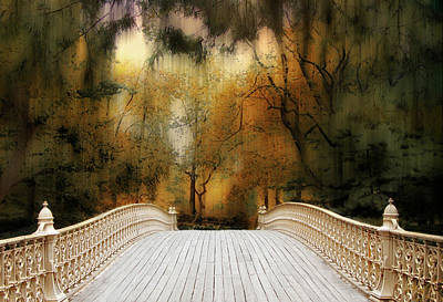 Pine Bank Arch In Autumn Poster