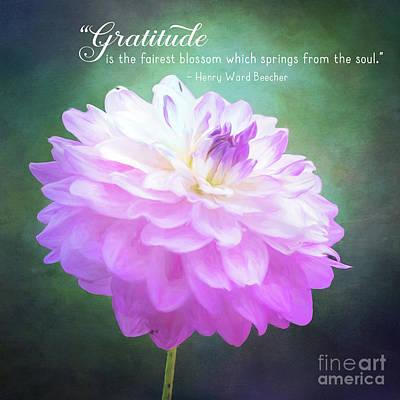 Pink Dahlia Gratitude Artwork Poster