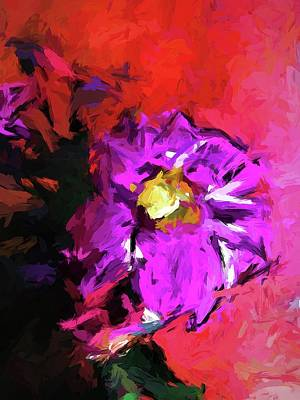 Purple And Yellow Flower And The Red Wall Poster
