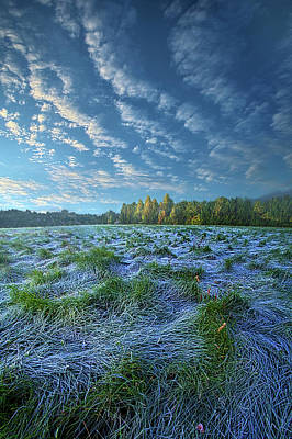 Poster featuring the photograph Quiet Grace by Phil Koch