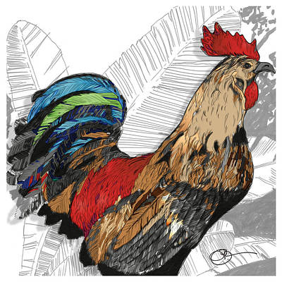 Rooster On Big Island Poster