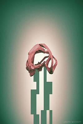 Rose - Abstract Geometric Frog Skull Art Poster