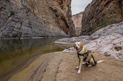 Poster featuring the photograph Santa Elena Canyon by Matthew Irvin