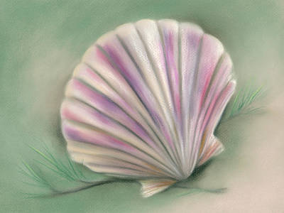 Poster featuring the pastel Scallop Shell With Pine Twigs by MM Anderson