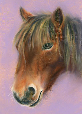Poster featuring the pastel Shaggy Brown Pony by MM Anderson