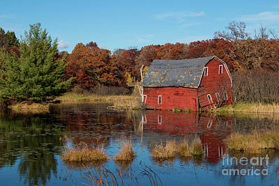 Sinking Red Barn In Fall Poster