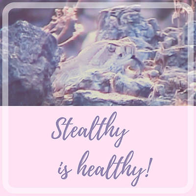 Poster featuring the photograph Stealthy Is Healthy by Judy Kennedy