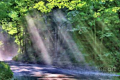 Poster featuring the photograph Sun Streaks by Debbie Stahre