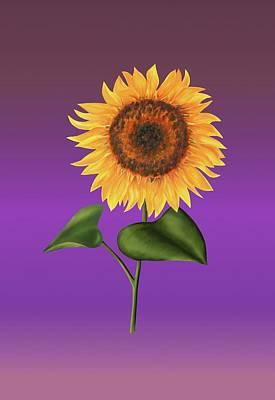 Sunflower On Purple Poster