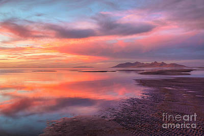 Poster featuring the photograph Sunset And Antelope Island by Spencer Baugh
