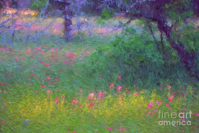 Sunset In Flower Meadow Poster