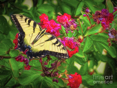 Swallowtail Among Flowers Poster