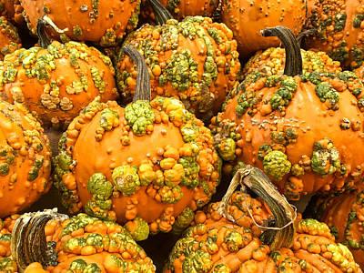 Textured Pumpkins  Poster