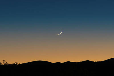 That Desert Moon Poster