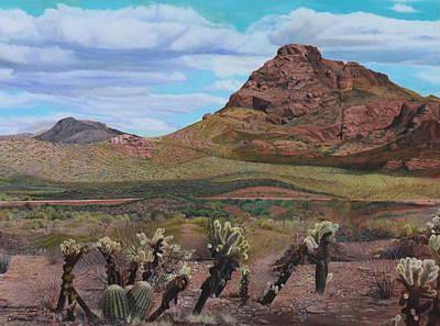 The Cholla At Mount Mcdowell, Arizona Poster