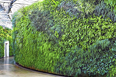 Poster featuring the photograph Leafy Green Wall by Bill Swartwout Fine Art Photography
