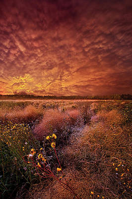 Poster featuring the photograph The Light So Softly Spoken by Phil Koch