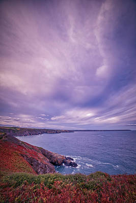 The Lizard Point Poster