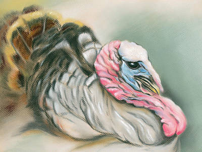 Poster featuring the pastel Tom Turkey Portrait by MM Anderson