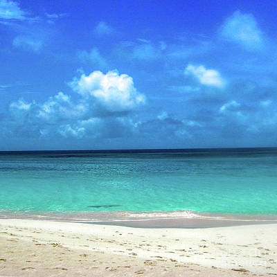 Topical Beach View Anguilla Poster