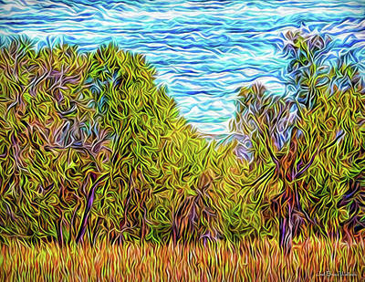Poster featuring the digital art Trees In The Field by Joel Bruce Wallach